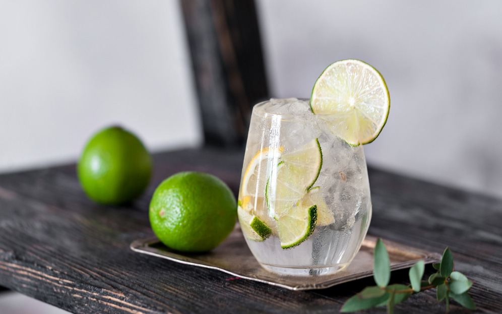cocktail drink with lime lemon tonic gin and ice