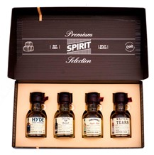 PREMIUM SPIRIT SELECTION IRISH PACK 4X100ML